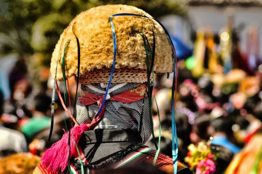 A back view of the head of a Parachico, 15 Jan 2015, Chiapa de Corzo / © Moisés Escobar M @ Wikipedia